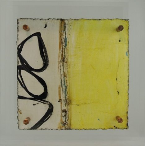 Michelle-Y-Williams-Cut-19-469_15_-x-15__Mixed-media-on-metal-with-plexi